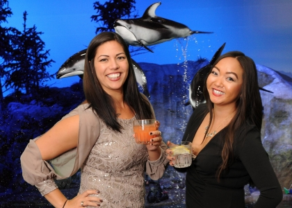 green screen photo booth at shedd aquarium chicago